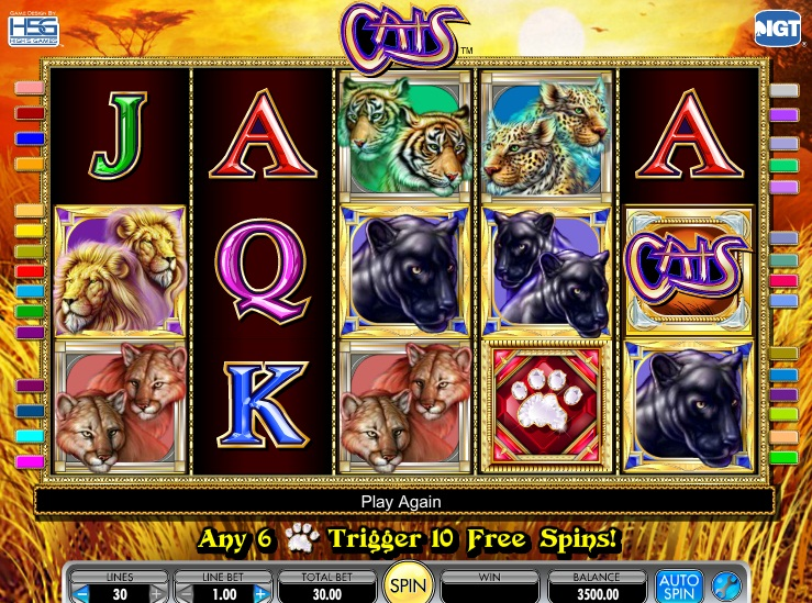 cats-slot-review-igt