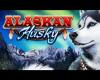 Alaskan Husky Video Slot
